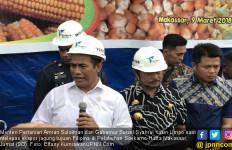 Menteri Amran Lepas Ekspor 60 Ribu Ton Jagung ke Filipina - JPNN.com