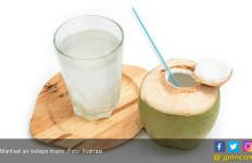 Difteri Bisa Dihambat dengan Rutin Minum Air Kelapa? - JPNN.com