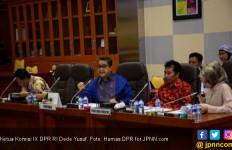 Dede Yusuf: Tangkap Pekerja Kasar Asing Illegal - JPNN.com