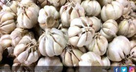Benarkah Bawang Putih Bisa Turunkan Kadar Kolesterol Tinggi?