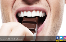 Cokelat Bisa Bikin Jerawat Muncul? - JPNN.com