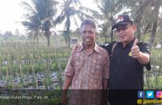 Hamparan Pasir di Kulonprogo Menjadi Lahan Tanaman Cabai - JPNN.com
