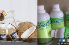 Vinegar Air Kelapa, Solusi Sehat Sebagai Pengawet Alami - JPNN.com