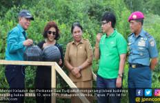Tingkatkan Kesejahteraan, Suku Kamoro Budayakan Kepiting - JPNN.com
