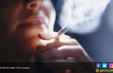 5 Cara Berhenti Merokok - JPNN.com