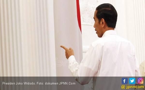 TKN Tak Akan Recoki Jokowi Rombak Kabinet Usai Lebaran - JPNN.com