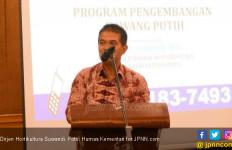 Durian Lokal Indonesia Siap Bersaing di Dunia - JPNN.com