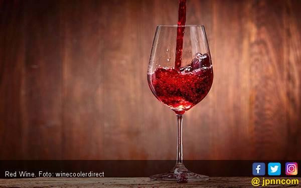 6 Fakta tentang Wine yang Harus Diketahui - JPNN.com