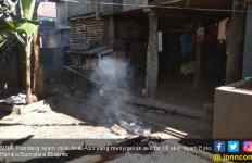 Diduga Terserang Flu Burung, Ratusan Ayam Mati Mendadak - JPNN.com