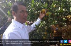 Mentan Optimistis Indonesia Bisa Jadi Lumbung Pangan Dunia - JPNN.com