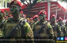 TNI Siap Bergerak, OPM Jangan Coba-coba - JPNN.com