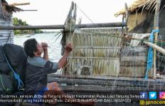 Sehari Rp 3 Miliar dari Kepiting Saja - JPNN.com