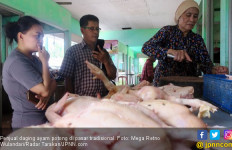 Jelang Lebaran, Harga Daging Ayam Naik 100 Persen - JPNN.com