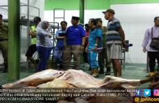 Kobar Operasikan RPH Modern, Daging di Pasar Dijamin Halal - JPNN.com
