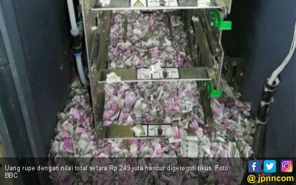 Tikus Bobol ATM, Duit Ratusan Juta Jadi Serpihan - JPNN.com