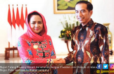 Mulanya Pengurus PDIP Tingkat Desa, Winarti Kini Jadi Bupati - JPNN.com