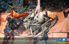 Heboh, Tengkorak Manusia Ditemukan di Dekat Pohon Aren - JPNN.com