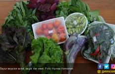 7 Makanan Sehat ini Ramah Lingkungan - JPNN.com