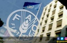 FAO Indonesia Bantah Punya Staf Bernama Ratno Soetjiptadi - JPNN.com