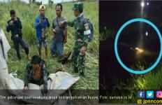 Korban Keganasan Buaya Muara Ditemukan Ngapung di Kanal - JPNN.com