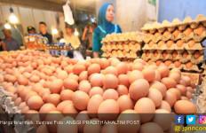 Harga Telur dan Daging Ayam Naik Jelang Natal - JPNN.com
