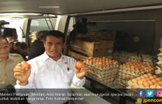 Kementan Jamin Stok Daging dan Telur Aman di Pasaran - JPNN.com