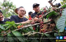 Akhir Pekan, Zulhasan Panen Raya Kopi di Lampung Barat - JPNN.com