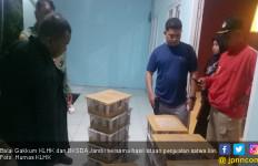 Polisi Gagalkan Penyeludupan Satwa Langka dari Tanjabtim ke Batam - JPNN.com