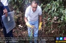 Penemuan Tengkorak Manusia di Hutan Hebohkan Warga Langkat - JPNN.com
