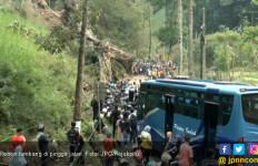 Pohon Usia Ratusan Tahun Mendadak Tumbang Timpa Mobil - JPNN.com