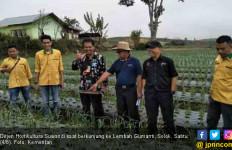 Mentan Sukses Jadikan Solok Tulang Punggung Bawang Sumatera - JPNN.com