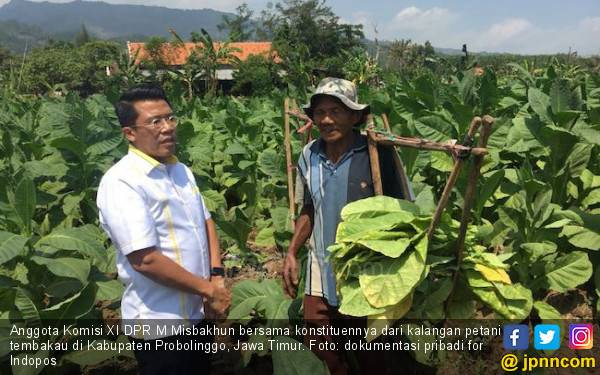 Bela Petani Tembakau, Misbakhun Terus Kawal RUU Pertembakauan - JPNN.com