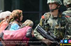19 Negara Arab Dukung Kebijakan Antiterorisme Tiongkok di Wilayah Muslim Uighur - JPNN.com