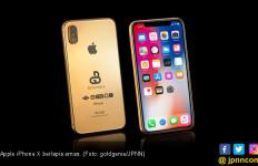 Wow! Ada iPhone X Seharga Rp 1,8 Miliar - JPNN.com