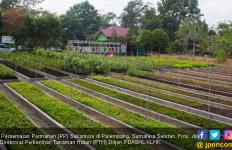 Yuk Belajar Menanam Ramah Lingkungan dari PP Sukomoro - JPNN.com