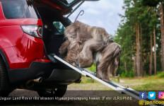 Jaguar Land Rover Rilis Aksesori Khusus Penumpang Hewan - JPNN.com