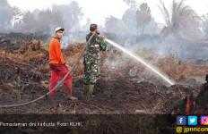 Peristiwa Karhutla, Jangan Terus Jadi Tamu Tahunan yang Menghantui Masyarakat - JPNN.com