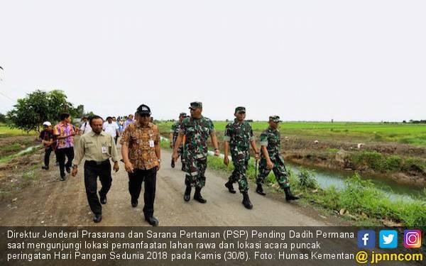 Padi Rawa Siap Panen Pada Hari Pangan Sedunia 2018 - JPNN.com
