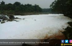 Sumber Busa di Kali Bekasi Berasal dari Usaha Laundry? - JPNN.com