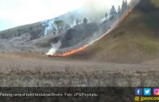 Duh...Bukit Teletubies Bromo Dilalap Api - JPNN.com