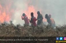 Relawan Turun Tangan Padamkan Api di Bukit Teletubies - JPNN.com