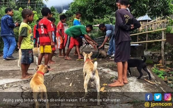 Kementan Upayakan Kejar Target Indonesia Bebas Rabies 2030 - JPNN.com