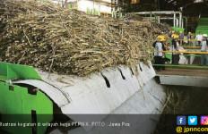 Karyawan PTPN Berpeluang Dapat Lahan 1 Hektare - JPNN.com