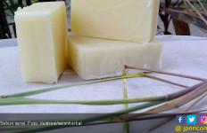 Kenali Manfaat Sabun Serai untuk Kesehatan - JPNN.com