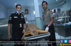 Lagi, Polisi Tembak Mati Bandar Narkoba di Banyuasin - JPNN.com