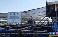 Pupuk Kaltim Sejahterakan Warga Lewat Budidaya Lobster - JPNN.com