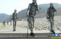 Makin Mesra, Dua Korea Bersih-Bersih Ranjau di Perbatasan - JPNN.com