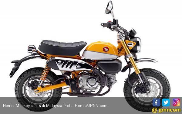 Honda Tarik Peredaran 645 Unit Monkey - JPNN.com