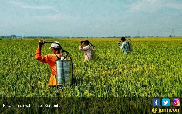 Mekanisasi Pertanian Jadi Solusi Kekurangan Tenaga Kerja - JPNN.com