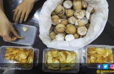 Pakai Cangkang Telur agar Kripik Tetap Renyah - JPNN.com